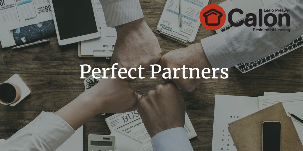 Practically Perfect Partners – In Every Way